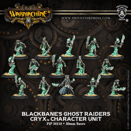Blackbane's Ghost Raiders Unit