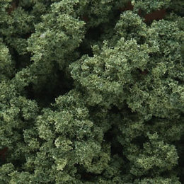Medium Green Clump-Foliage