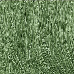 Medium Green Field Grass
