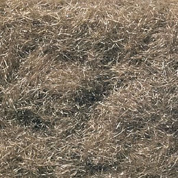 Burnt Grass