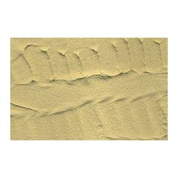 Earth Texture - Desert Sand